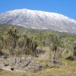(c)privat, Kilimanjaro