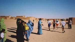 Sahara_8